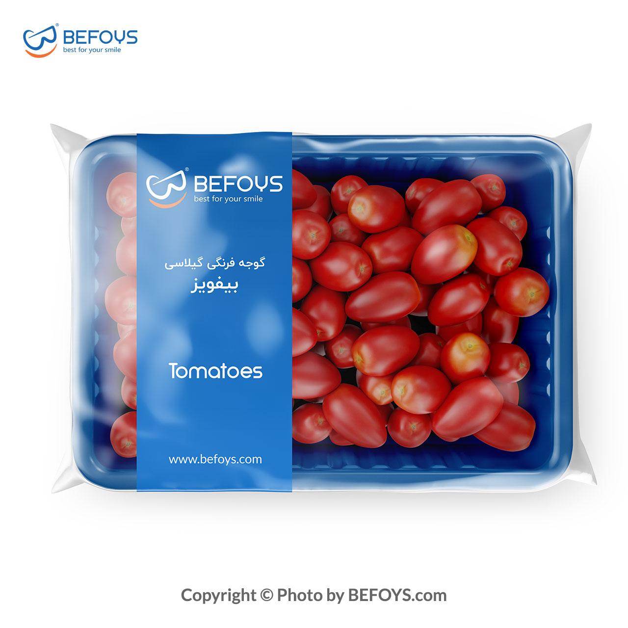 گوجه گیلاسی بیفویز