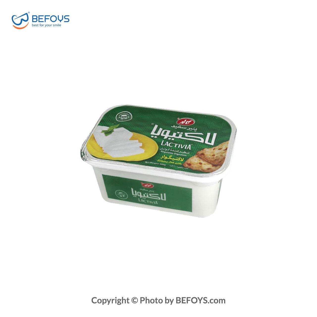 پنیر سفید لاکتیویا 400 گرمی