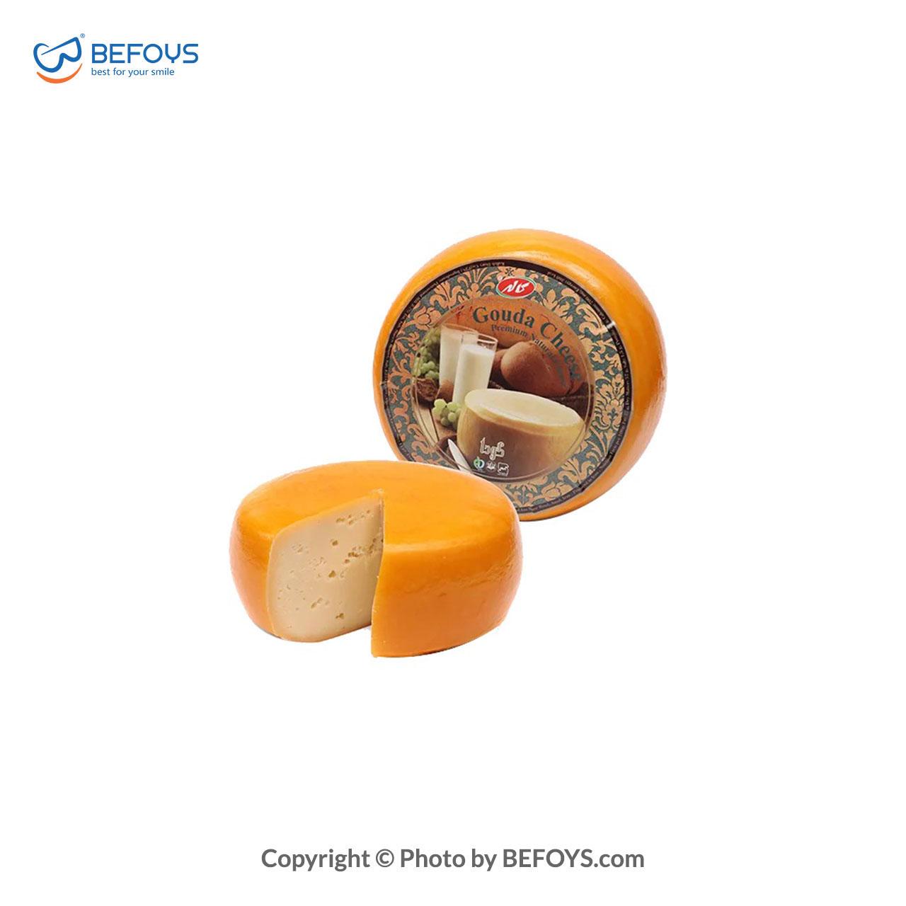 پنیر گودا قالبی